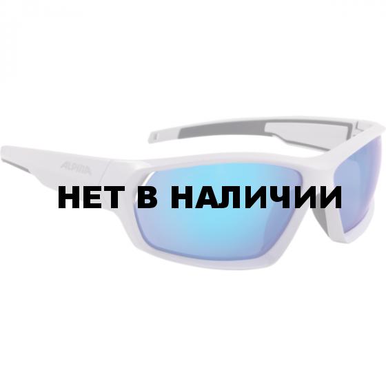 Очки солнцезащитные Alpina 2018 PHESO light grey