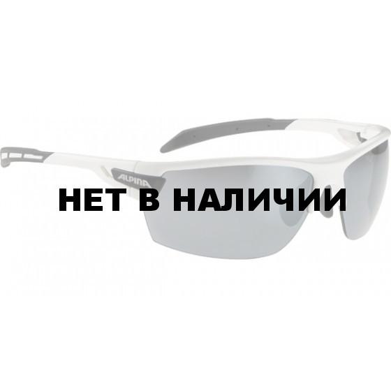 Очки солнцезащитные ALPINA TRI-SCRAY white-black