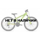 Велосипед FOCUS RAVEN ROOKIE 24 2016 GREEN