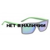 Очки солнцезащитные ALPINA 2017 LENYO P black matt-green