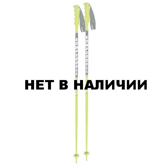 Горнолыжные палки KOMPERDELL 2014-15 Racing Nationalteam Profi 19mm