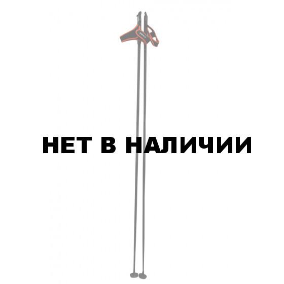 Лыжные палки Bjorn Daehlie 2017-18 PACE BLACK (см:165)