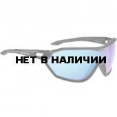 Очки солнцезащитные Alpina 2018 ALPINA S-WAY CM+ black matt