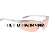 Очки солнцезащитные ALPINA DRIFT silver
