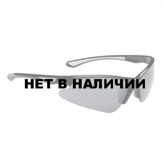 Очки солнцезащитные Alpina 2018 LEVITY black