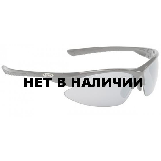 Очки солнцезащитные ALPINA DRIBS 2.0 black