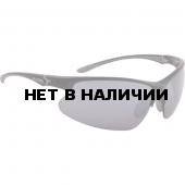 Очки солнцезащитные Alpina 2018 DRIBS 3.0 black-grey