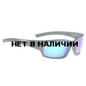 Очки солнцезащитные ALPINA 2017 KEEKOR P black matt
