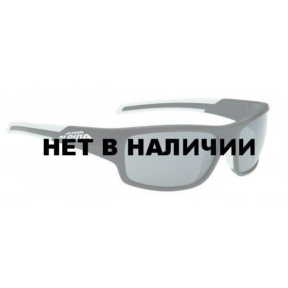 Очки солнцезащитные Alpina 2018 TESTIDO black matt-white