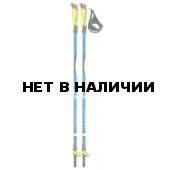 Палки для скандинавской ходьбы Cober 2018 Easy lever blue 2,0