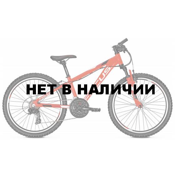 Велосипед FOCUS RAVEN ROOKIE 24 2018 red