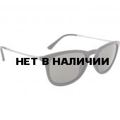 Очки солнцезащитные Alpina 2018 ZARYN black