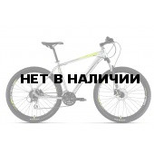 Велосипед Welt Rockfall 1.0 SE 2017 polish silver/acid lemon