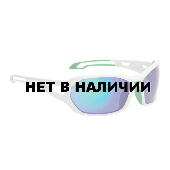 Очки солнцезащитные Alpina 2018 BERRYN CM+ white-green