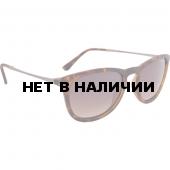 Очки солнцезащитные Alpina 2018 ZARYN havana matt