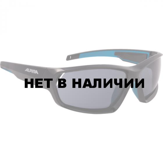 Очки солнцезащитные Alpina 2018 PHESO P black-blue