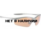Очки солнцезащитные ALPINA TRI-EFFECT tin