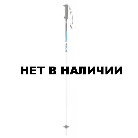Горнолыжные палки Elan 2015-16 SP MAXX BLUE