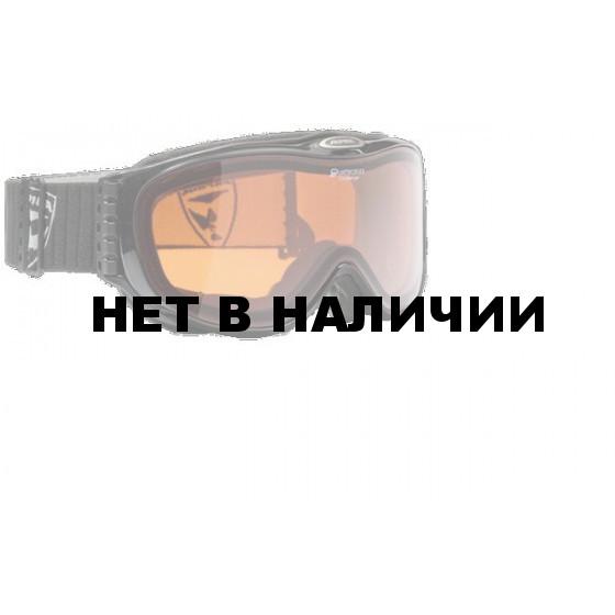 Очки горнолыжные Alpina Challenge 2.0 DH black transparent_DH S2