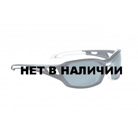 Очки солнцезащитные Alpina 2018 BERRYN P black matt-white