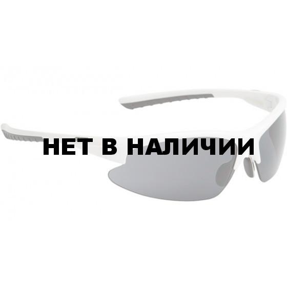 Очки солнцезащитные ALPINA DRIBS 2.0 white