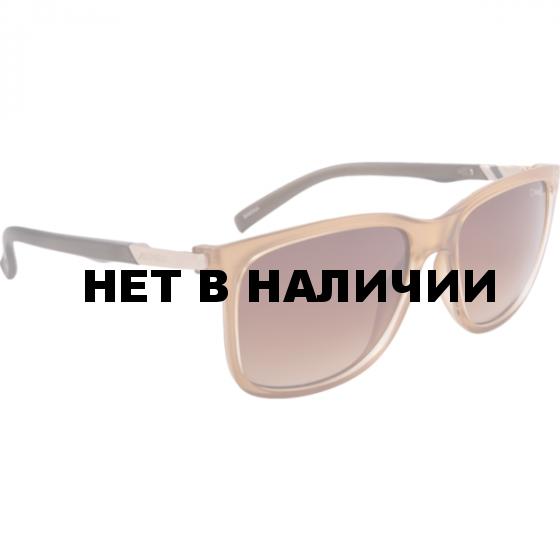 Очки солнцезащитные Alpina 2018 BAKINA honey transparent