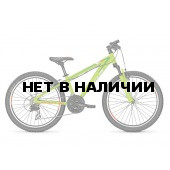 Велосипед FOCUS RAVEN ROOKIE 1.0 20R 2017 GREEN
