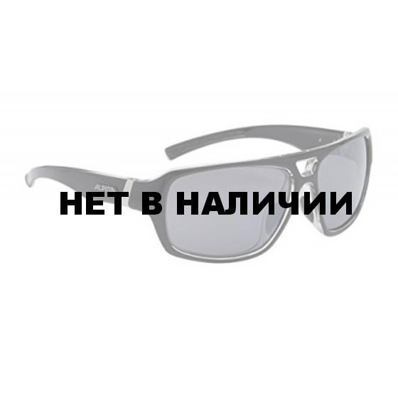 Очки солнцезащитные ALPINA 2015-16 SPORT STYLE YUKO black-transparent