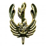 Эмблема петличная Экологическая служба ВС РФ повседневная металл