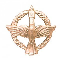Эмблема петличная Космические войска повседневная металл