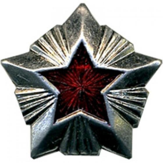 Знак различия Звезда Роспотребнадзор малая металл
