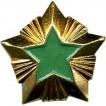 Знак различия Звезда Росприроднадзор большая металл