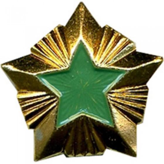 Знак различия Звезда Росприроднадзор малая металл