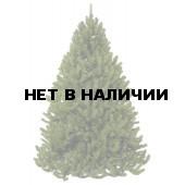 Сосна Триумф Величавая 73584 (215 см)