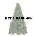 Сосна Триумф Санкт-Петербург 73380 (260 см)