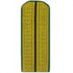 Погоны Береговая охрана ПС ФСБ Младшего офицерского состава парадные