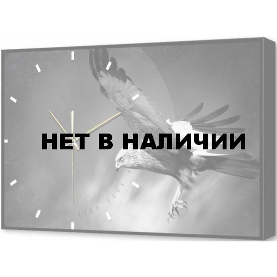 Настенные часы TimeBox BL-2409