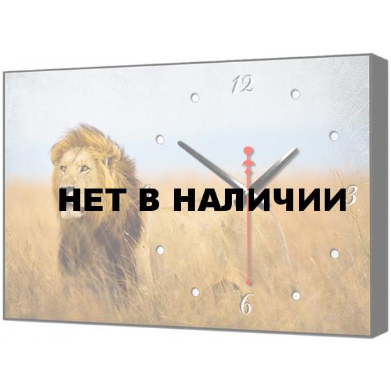 Настенные часы TimeBox BL-2415
