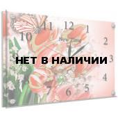 Настенные часы New Time N51