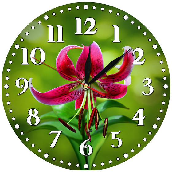 Настенные часы New Time A20