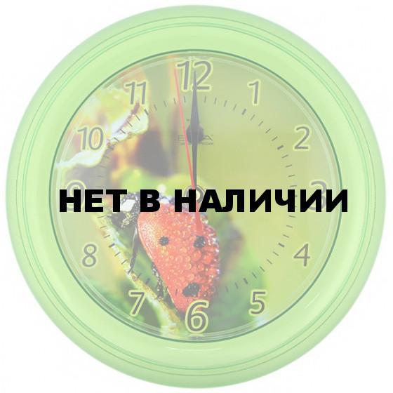 Настенные часы Вега П 6-3-2