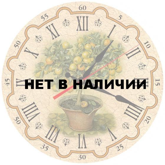Настенные часы Akita AC20