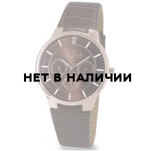 Наручные часы мужские Skagen 331XLRLD