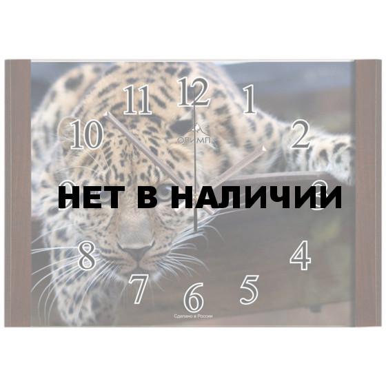 Настенные часы Олимп ЕБ-002