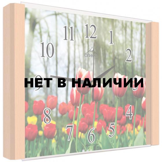 Настенные часы Олимп ЕБ-015 Бук