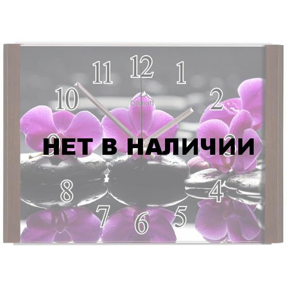Настенные часы Олимп ЕВ-013