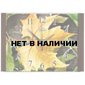 Настенные часы Олимп ЕВ-015
