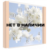 Настенные часы Олимп ЕГ-010 Бук