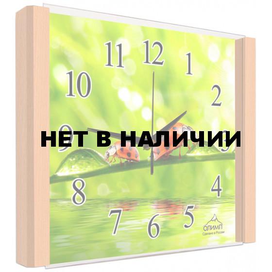 Настенные часы Олимп ЕГ-014 Бук