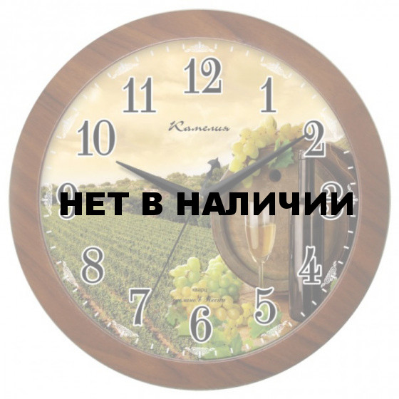 Настенные часы Камелия 4395093